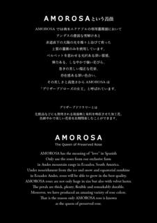 AMOROSA-POP.jpg