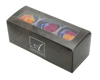 ARC-BOX.jpg