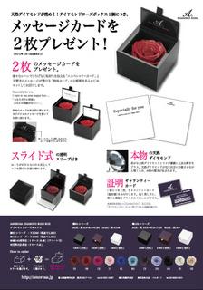 DIAMONDROSE-Box.jpg